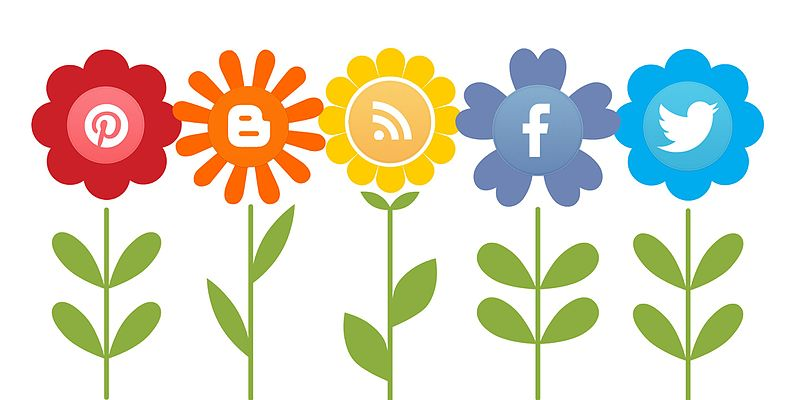 Adventures in Social Media